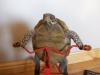 velo-tortue