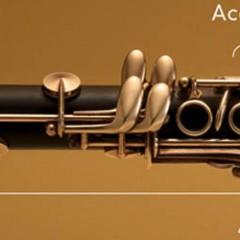Les reprises musicales avec des instruments classiques